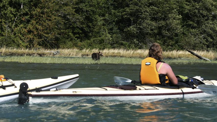Bute-Inlet-Kayak-Tour4