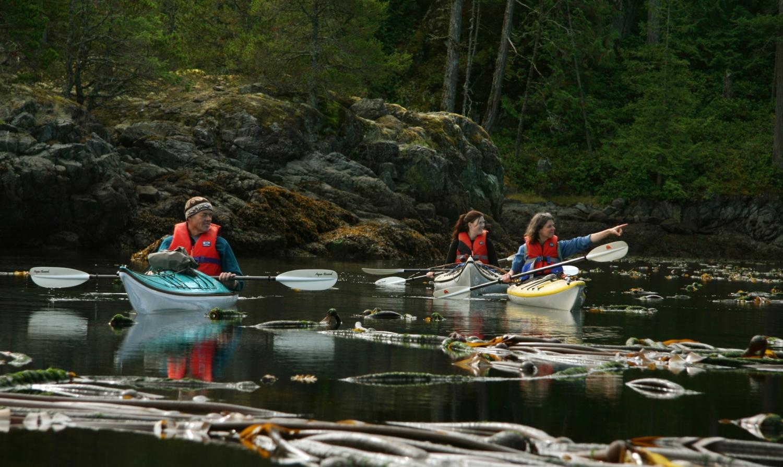 Kayak-Day-Trip2