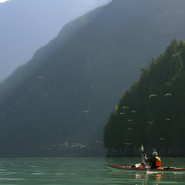 Bute Inlet Expedition